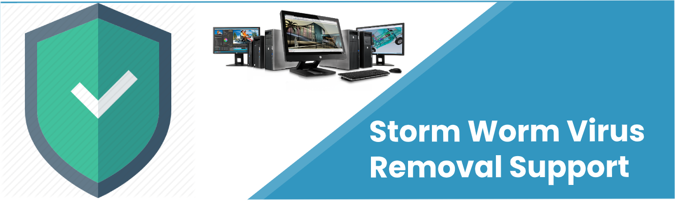 Storm Worm Virus Removal Support